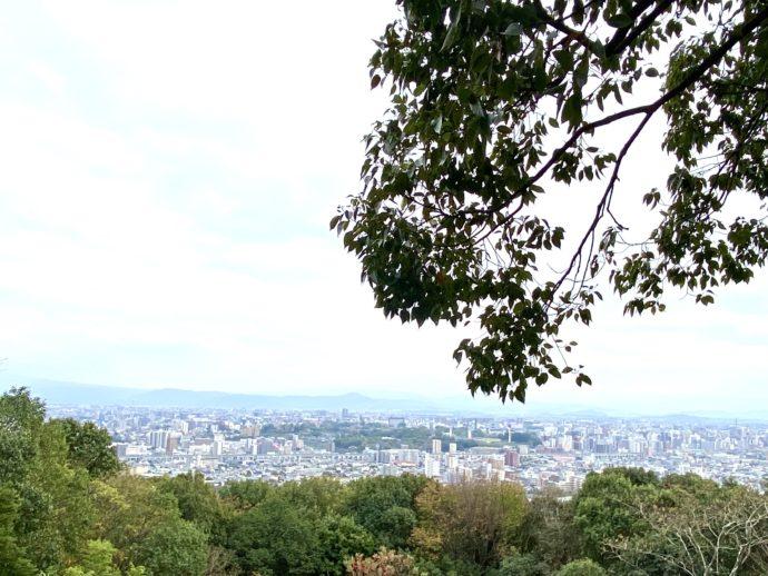 本妙寺展望スポットから見える熊本市