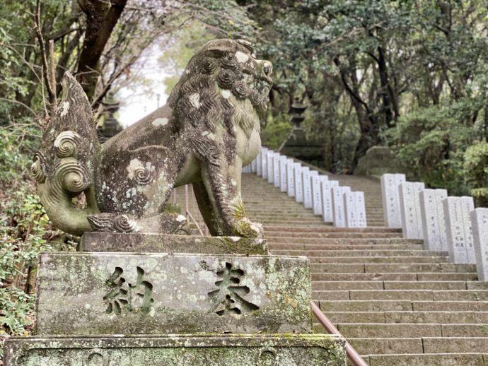 本妙寺の石段の狛犬