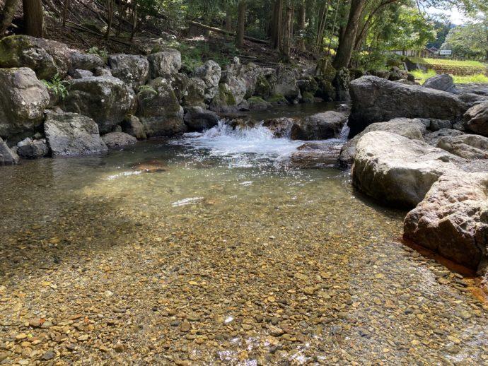 遠敷川の美しい水