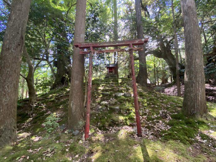若狭神宮寺の稲荷社の赤鳥居