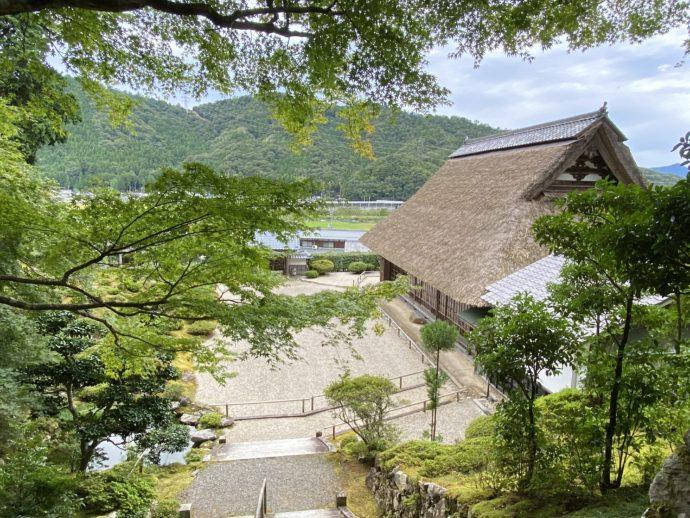 豪徳寺のお庭と屋根