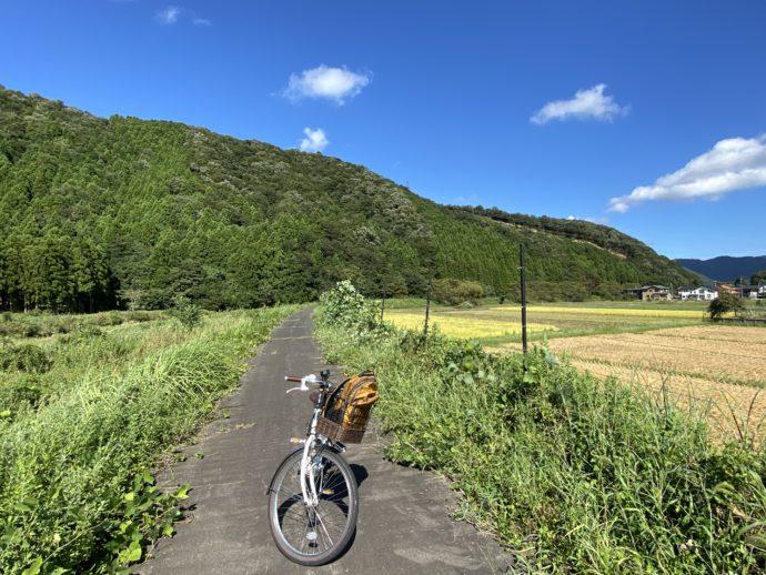 自転車と田舎道と田んぼ