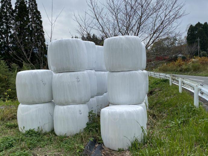 謎の白い樽