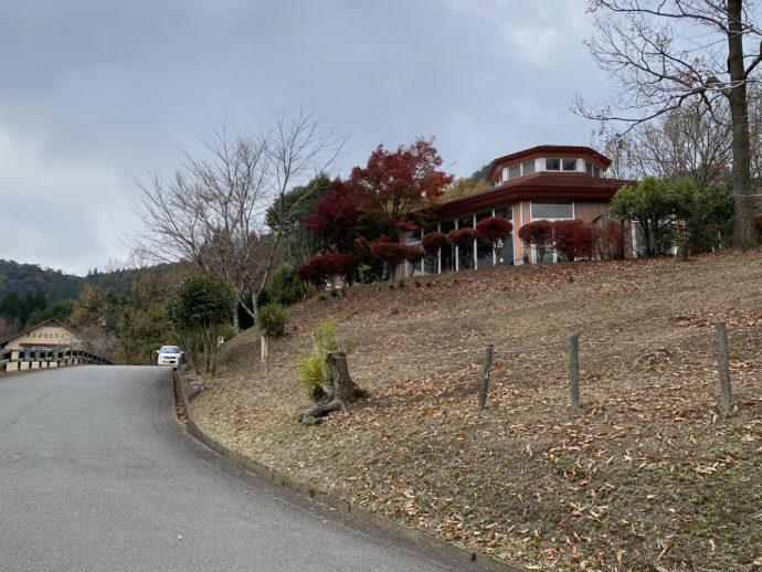 天岩戸温泉への道路