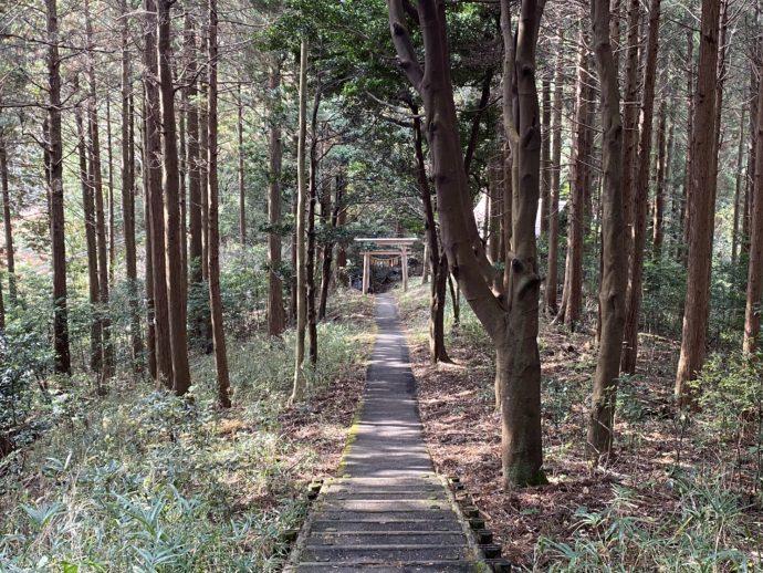 四皇子峰への道