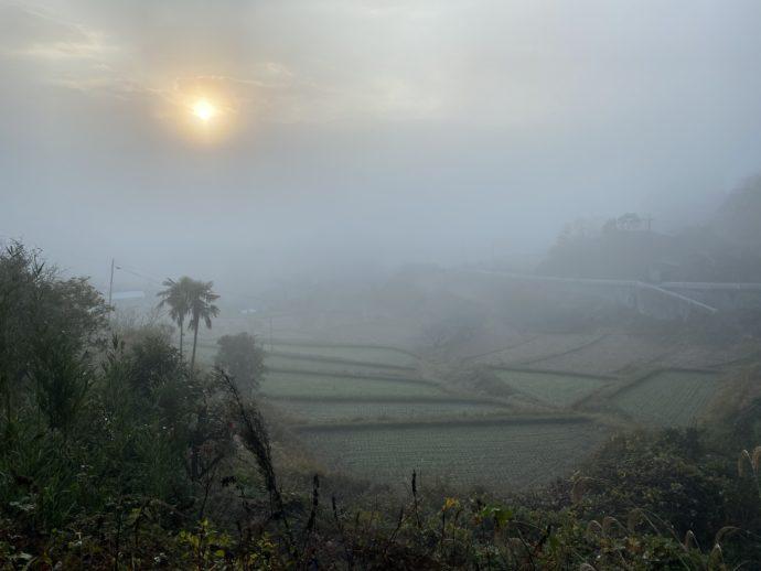 朝霧のなかの棚田