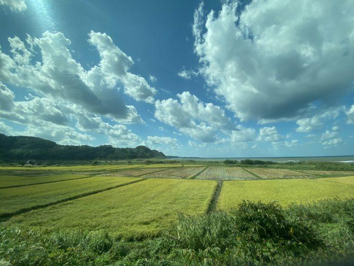 リゾートしらかみから見える田んぼと雲