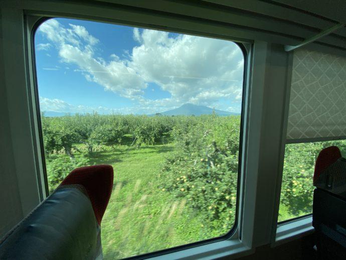 窓から見えるりんご園