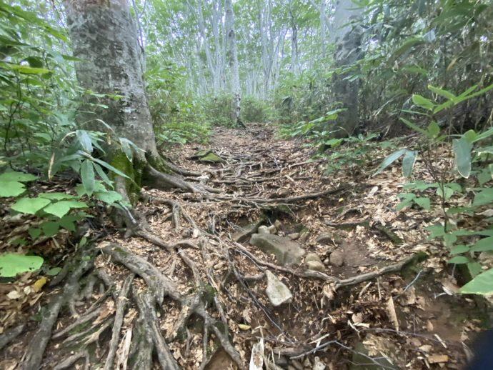 岩木山登山道