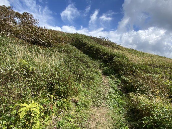 鳥海山への道