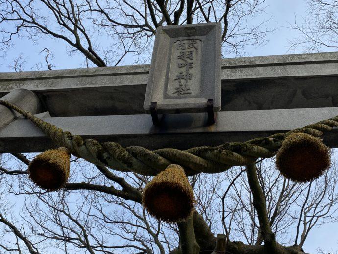 羽咋神社のしめ縄と鳥居