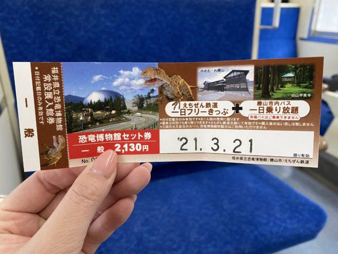 福井県立恐竜博物館フリーきっぷ
