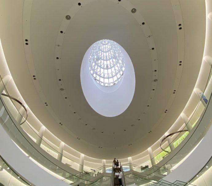 福井県立恐竜博物館の天井
