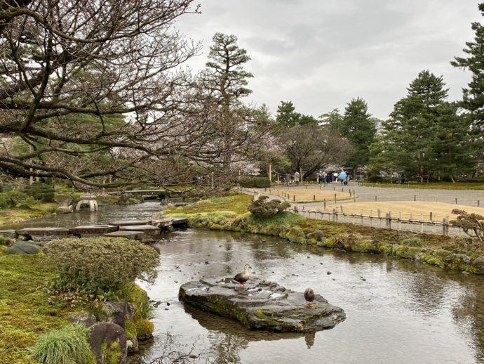 兼六園の瓢池