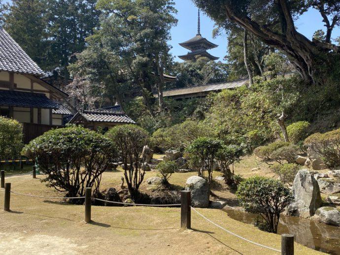妙成寺書院からのぞむ五重塔