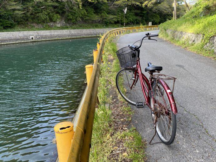 松本川沿いの道