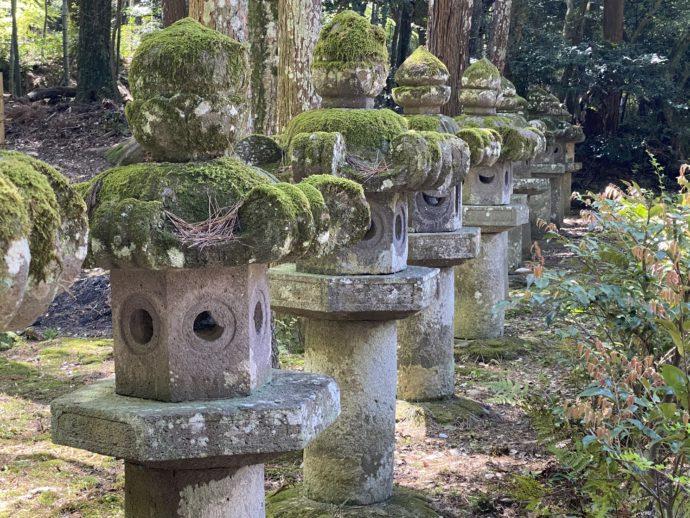 並んだ石灯籠