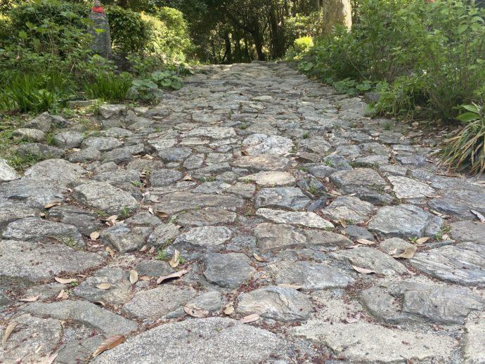 阿弥陀寺の石畳