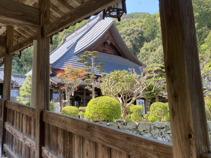 瑠璃光寺の回廊からみる本堂