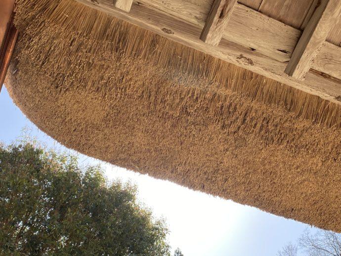 本堂の茅葺屋根