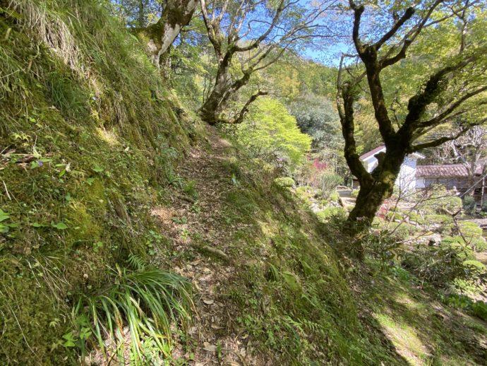 秋葉堂への山道