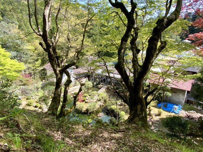 秋葉堂への山道から眺めた永明寺