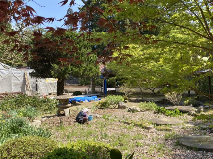 永明寺本堂前の庭