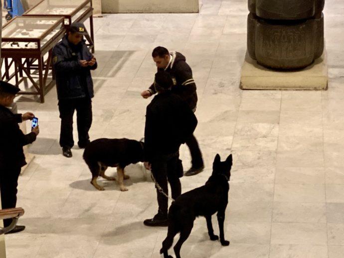 博物館と犬と捜査員