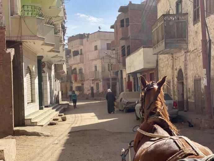 エドフの街を走る馬車