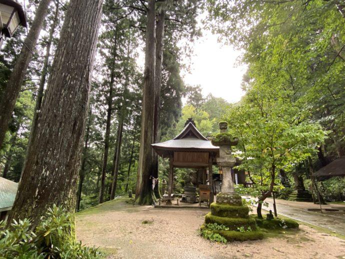 三佛寺境内