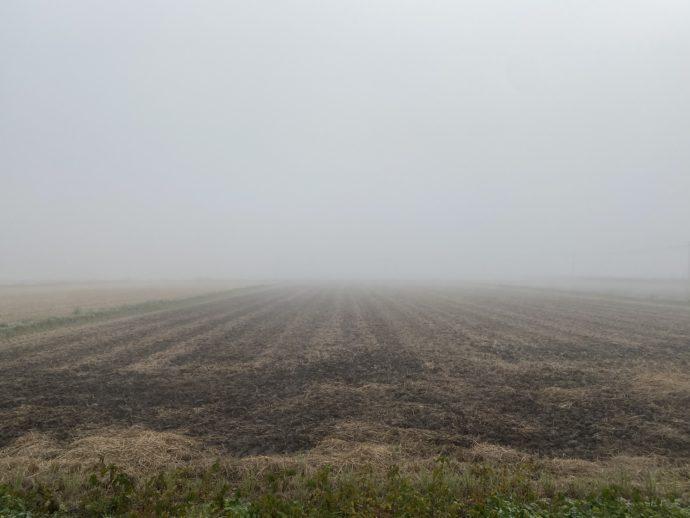 霧の中の田畑