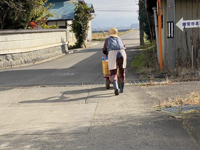 会津のおばあちゃま