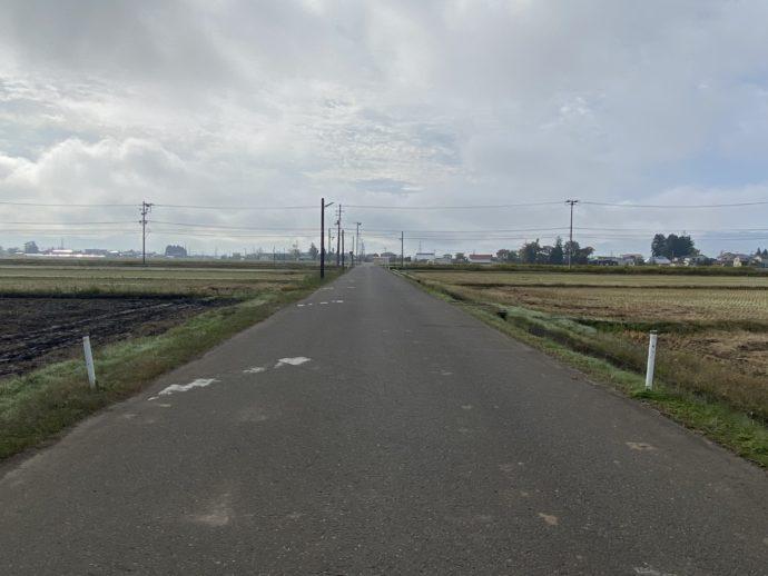 勝常寺への田んぼ道