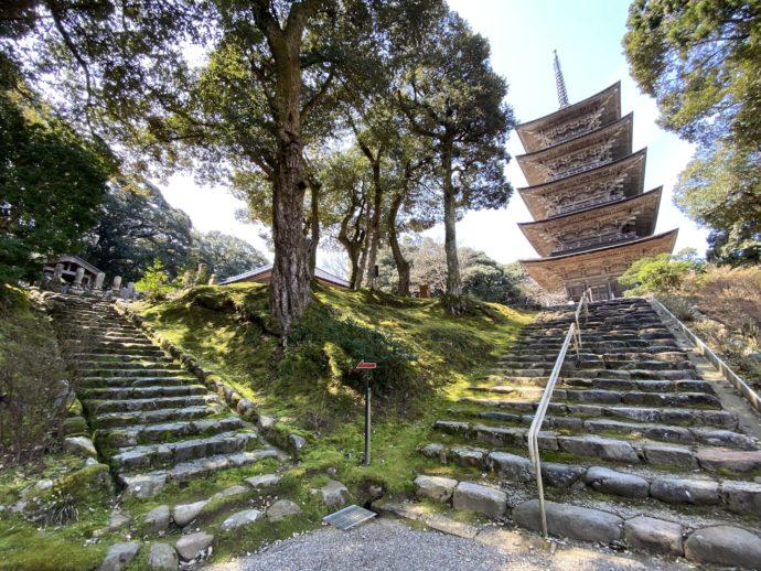 妙成寺の石段ふたつ