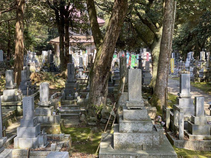 妙成寺の墓地