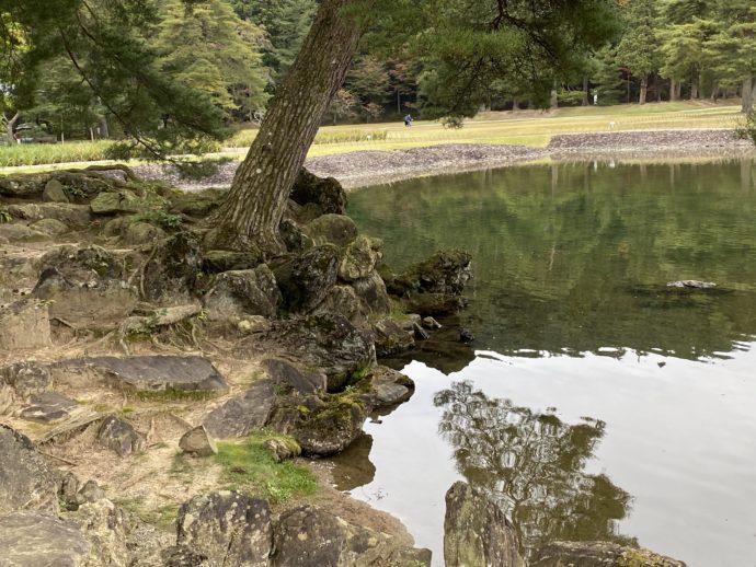 大泉が池と築山