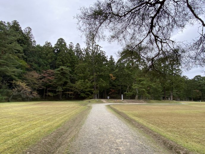 毛越寺の庭