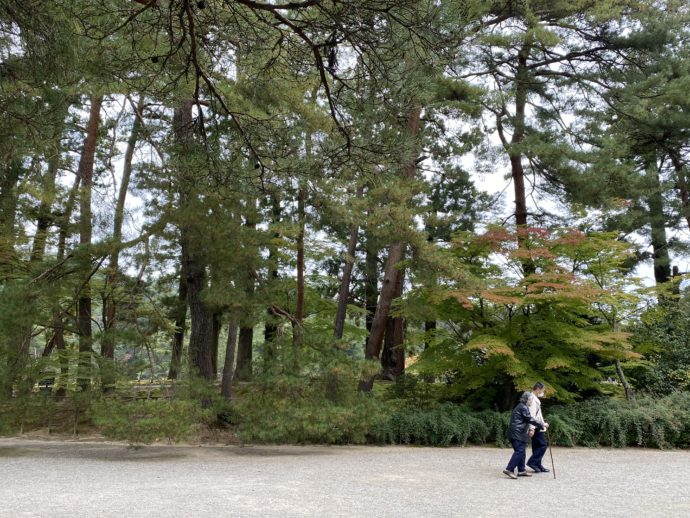 毛越寺の境内