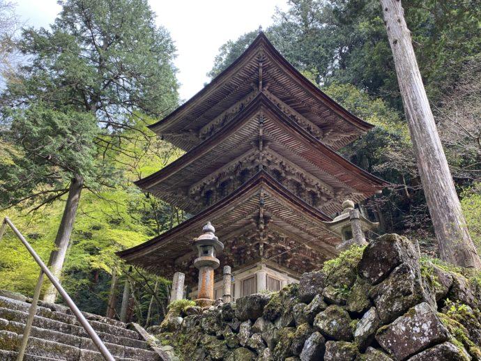 横蔵寺の三重塔を見上げる