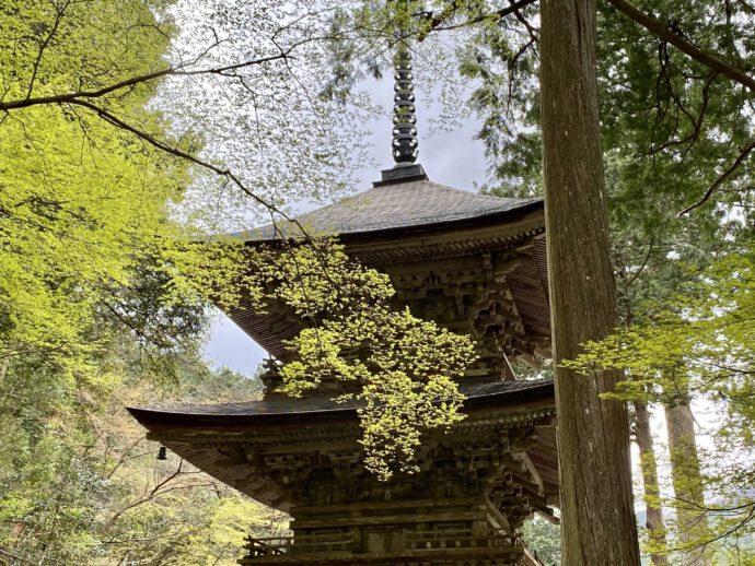横蔵寺の三重塔