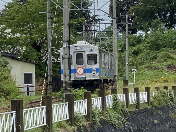大鰐線の電車