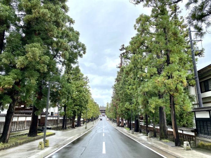 まっすぐ伸びる禅林街
